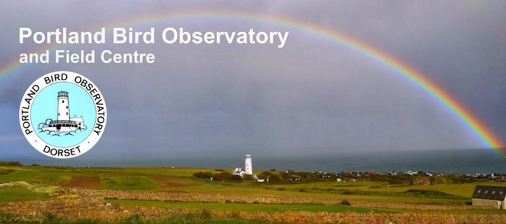 Portland Bird Observatory