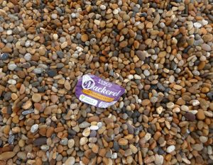 Fig 2: An ironic find on the litter pick. Why catch mackerel when you can have it for lunch from a tin! © Angela Thomas
