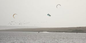 Three kite surfers disturbing hundreds of wintering Brent geese including numerous other waterfowl.